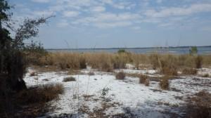 Lake Caloosa - Crooked Lake
